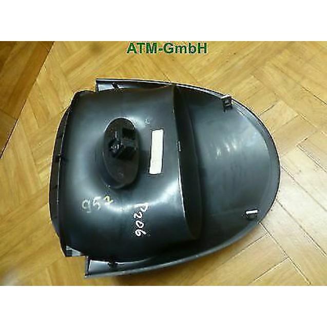 Verkleidung Warnblinkerschalter Schalter Peugeot 206 Visteon 9637386077